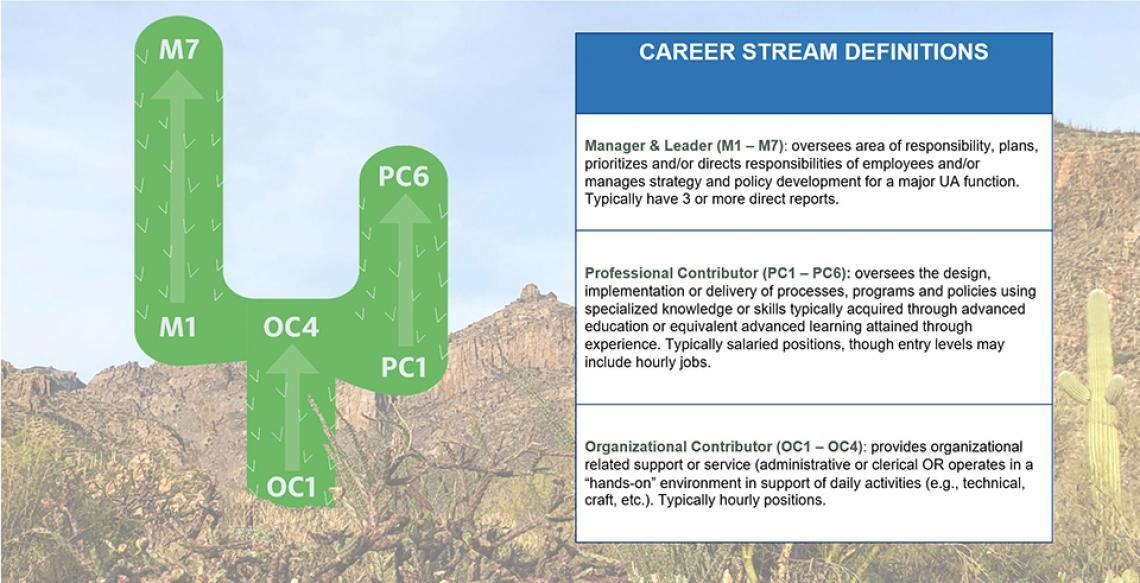 Career Stream Definitions